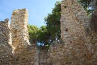 sulla rupe i ruderi del Castello Eufemio, di epoca medioevale - 4 ottobre 2007  - Calatafimi segesta (671 clic)