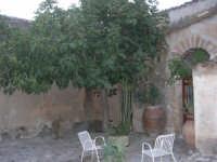 all'interno del Baglio Isonzo: angolo con ficara - 19 settembre 2007  - Scopello (882 clic)