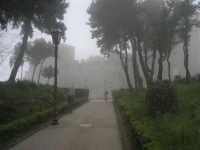 la Villa Comunale-Balio e le Torri medievali avvolti dalla foschia - 1 maggio 2009   - Erice (2268 clic)