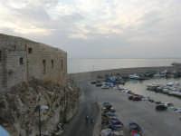 il porto - 23 settembre 2007  - Terrasini (1323 clic)