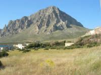 Monte Cofano - 27 aprile 2008  - Cornino (824 clic)