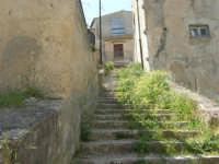 per le vie del paese: scalinata erbosa - 23 aprile 2006   - Palazzo adriano (1605 clic)