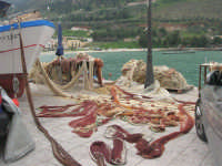 reti al porto - 22 marzo 2009  - Castellammare del golfo (1008 clic)