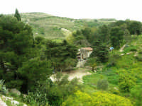 all'interno della zona archeologica - 12 aprile 2007   - Segesta (1928 clic)
