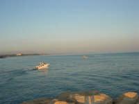 panorama dal molo - 1 agosto 2007  - Marinella di selinunte (1785 clic)
