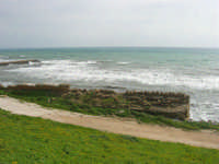 mare mosso - 1 marzo 2009   - Marinella di selinunte (1757 clic)