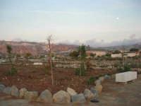 il nuovo giardino sul lungomare - 12 ottobre 2008   - Cornino (944 clic)
