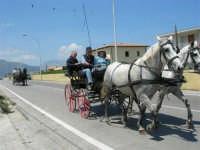 Come delizioso è andar sulla carrozzella - 13 maggio 2006  - Alcamo marina (1469 clic)