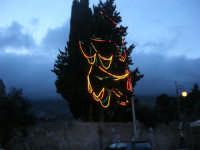 un albero ancora addobbato a festa - 11 gennaio 2009  - Scopello (4719 clic)