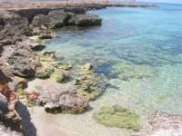 Golfo del Cofano - mare stupendo - 29 luglio 2009  - San vito lo capo (867 clic)