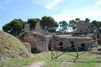 sulla rupe i ruderi del Castello Eufemio, di epoca medioevale - 4 ottobre 2007   - Calatafimi segesta (656 clic)