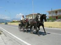 Come delizioso è andar sulla carrozzella - 13 maggio 2006  - Alcamo marina (1659 clic)