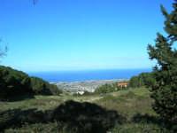 Bosco d'Alcamo - Riserva Naturale Orientata - sul monte Bonifato: panorama - 8 dicembre 2006   - Alcamo (1048 clic)