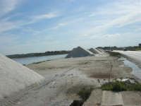 Riserva Naturale Orientata Saline di Trapani e Paceco - 17 febbraio 2007  - Trapani (1144 clic)