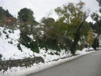 neve sul monte Bonifato - 15 febbraio 2009     - Alcamo (2447 clic)