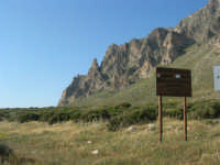 Riserva Orientata Monte Cofano - 27 aprile 2008  - Cornino (862 clic)