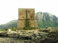 Torre Pozzillo - 1 giugno 2008  - Cinisi (1520 clic)