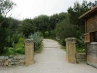 l'ingresso e la salita per accedere al Tempio - 12 aprile 2007   - Segesta (2029 clic)