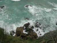 la costa: quando il mare è in burrasca - 22 marzo 2009  - Castellammare del golfo (949 clic)