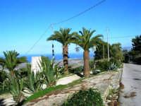 sul monte Bonifato: panorama - 8 dicembre 2006   - Alcamo (1053 clic)