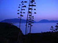 Golfo di Castellammare a sera - 12 luglio 2008   - Balestrate (1165 clic)