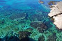 Golfo del Cofano: mare stupendo - 24 febbraio 2008  - San vito lo capo (593 clic)