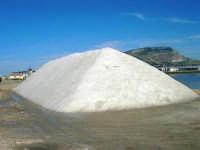 Riserva Naturale Orientata Saline di Trapani e Paceco - 17 febbraio 2007   - Trapani (1187 clic)