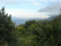 panorama - 19 aprile 2009  - Riserva dello zingaro (4340 clic)