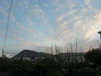 stormo di uccelli in volo - Monte Bonifato - 3 febbraio 2008  - Alcamo (1076 clic)