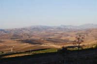 i campi, le dolci colline, i monti - 2 ottobre 2007  - Poggioreale (2192 clic)