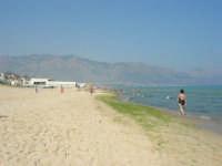 Che brutta sorpresa: una incredibile concentrazione di alghe! Zona Tonnara - 29 giugno 2008  - Alcamo marina (848 clic)