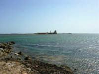 C/da Birgi Novo - costa e mare verso sud - 25 maggio 2008  - Marsala (934 clic)