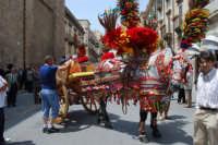 sfilata carretti siciliani - corso 6 Aprile - 18 maggio 2008  - Alcamo (1282 clic)
