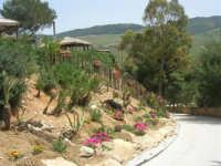 Baglio Ardigna - esterno con panorama - 17 maggio 2009  - Salemi (2522 clic)