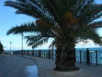 Via Militelli - 20 settembre 2009  - Castellammare del golfo (1548 clic)