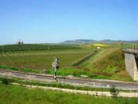 GALLITELLO - panorama - 22 aprile 2007  - Alcamo (1293 clic)