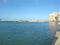 il porto, il Castello - 6 dicembre 2008  - Castellammare del golfo (522 clic)