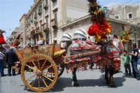 sfilata carretti siciliani - corso 6 Aprile - 18 maggio 2008  - Alcamo (757 clic)