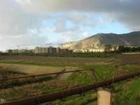 panorama e Monte Erice - 1 febbraio 2009  - Erice (2806 clic)