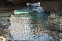 Golfo del Cofano: mare stupendo - 24 febbraio 2008  - San vito lo capo (545 clic)