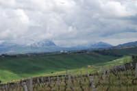 montagne innevate ad est - 13 febbraio 2009   - Alcamo (2383 clic)