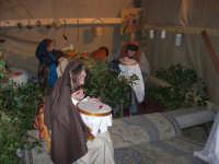 PRESEPE VIVENTE - I.C. Giovanni Pascoli - 20 dicembre 2008   - Castellammare del golfo (659 clic)
