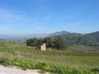 Alcamo ed il Monte Bonifato visti da Segesta - 27 gennaio 2008  - Segesta (1216 clic)