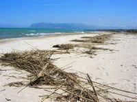 zona Canalotto: la spiaggia nel giorno della Pasquetta - 9 aprile 2007  - Alcamo marina (911 clic)