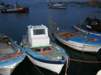 barche da pesca ormeggiate - 1 aprile 2007  - Castellammare del golfo (906 clic)