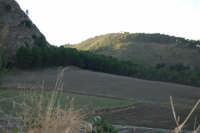 i campi, la collina - 2 ottobre 2007  - Poggioreale (2220 clic)