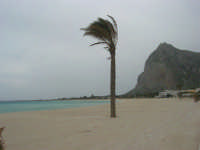 la spiaggia ed il mare spazzati dallo scirocco - 29 marzo 2009  - San vito lo capo (1181 clic)