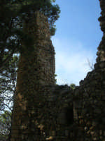 sulla rupe i ruderi del Castello Eufemio, di epoca medioevale - 4 ottobre 2007   - Calatafimi segesta (665 clic)