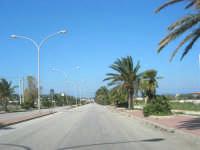la strada d'accesso alla città - 24 febbraio 2008  - San vito lo capo (616 clic)