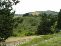 il Tempio - 12 aprile 2007   - Segesta (2262 clic)